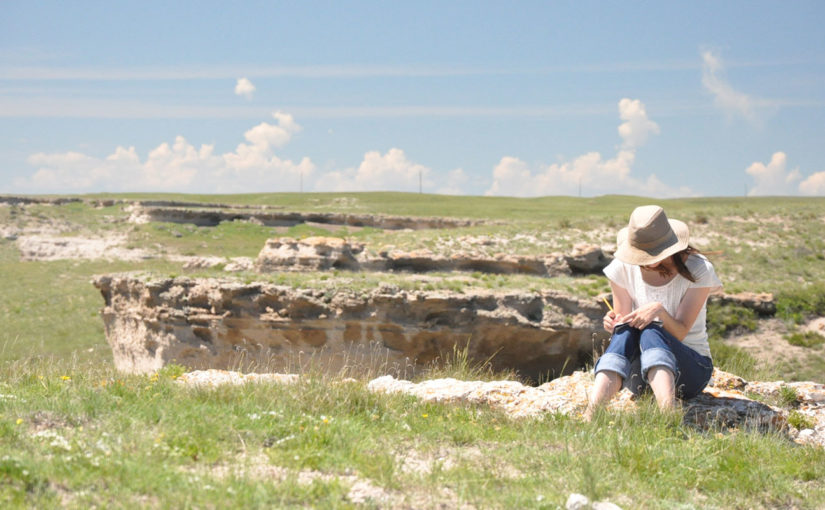 Bare Bones: Place-Based Teaching Through the Stories of Agate Fossil Beds National Monument—Part 5 of The Nebraska Experience